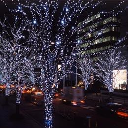 Proiettore Luci Natale Bianche.Luci Di Natale Da Esterno
