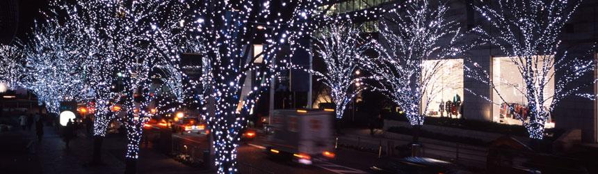 Catene di luci di Natale per esterno